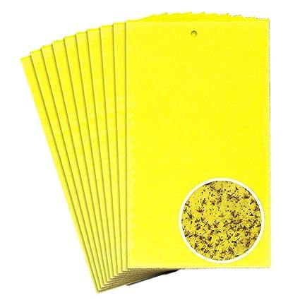 10 piezas Ambos lados Amarillo pizarras Trampas adhesivas- TIANOR Agrícolas Trampas adhesivas para moscas,