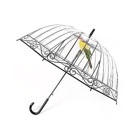 Paraguas transparente para mujer, Paraguas de lluvia con forma de domo, Paraguas auto abierto