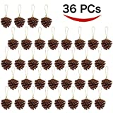 36 Hanging Real Pine Cones Ornaments for Christmas and Holiday Decorations by Joiedomi