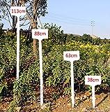 10pcs Adjutable Gardening Plant Waterproof Larger Label Tree Flower Planting Tag Tools
