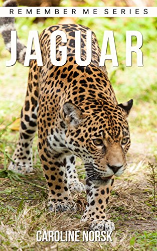 Jaguar: Amazing Photos & Fun Facts Book About Jaguars For Kids (Remember Me Series)