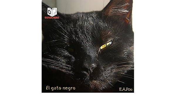 Amazon.com: El gato negro [The Black Cat] (Audible Audio Edition): Edgar Allan Poe, Sonolibro: Books