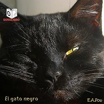 El gato negro [The Black Cat]