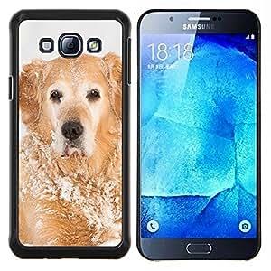 Golden Retriever Invierno Blancanieves- Metal de aluminio y de plástico duro Caja del teléfono - Negro - Samsung Galaxy A8 / SM-A800