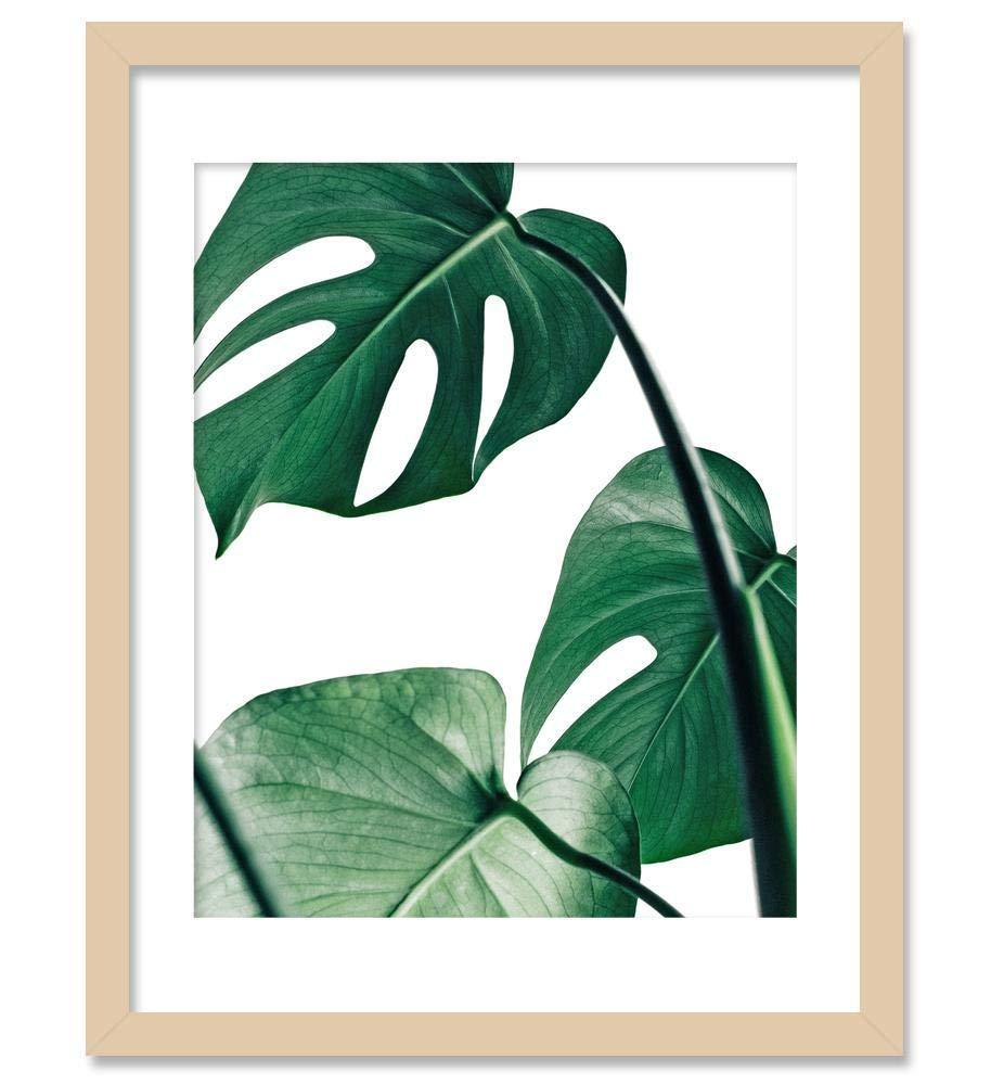 Amazon Com Tropical Leaf Print Botanical Print Palm Print Monstera Art Green Plant Prints Leaf Photography Leaf Print Tropical Art Print Watercolor Leaves Art Bohemian Art Boho Artwork Natural Jungle Art 8x10 Handmade