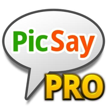 Hasil gambar untuk picsay pro