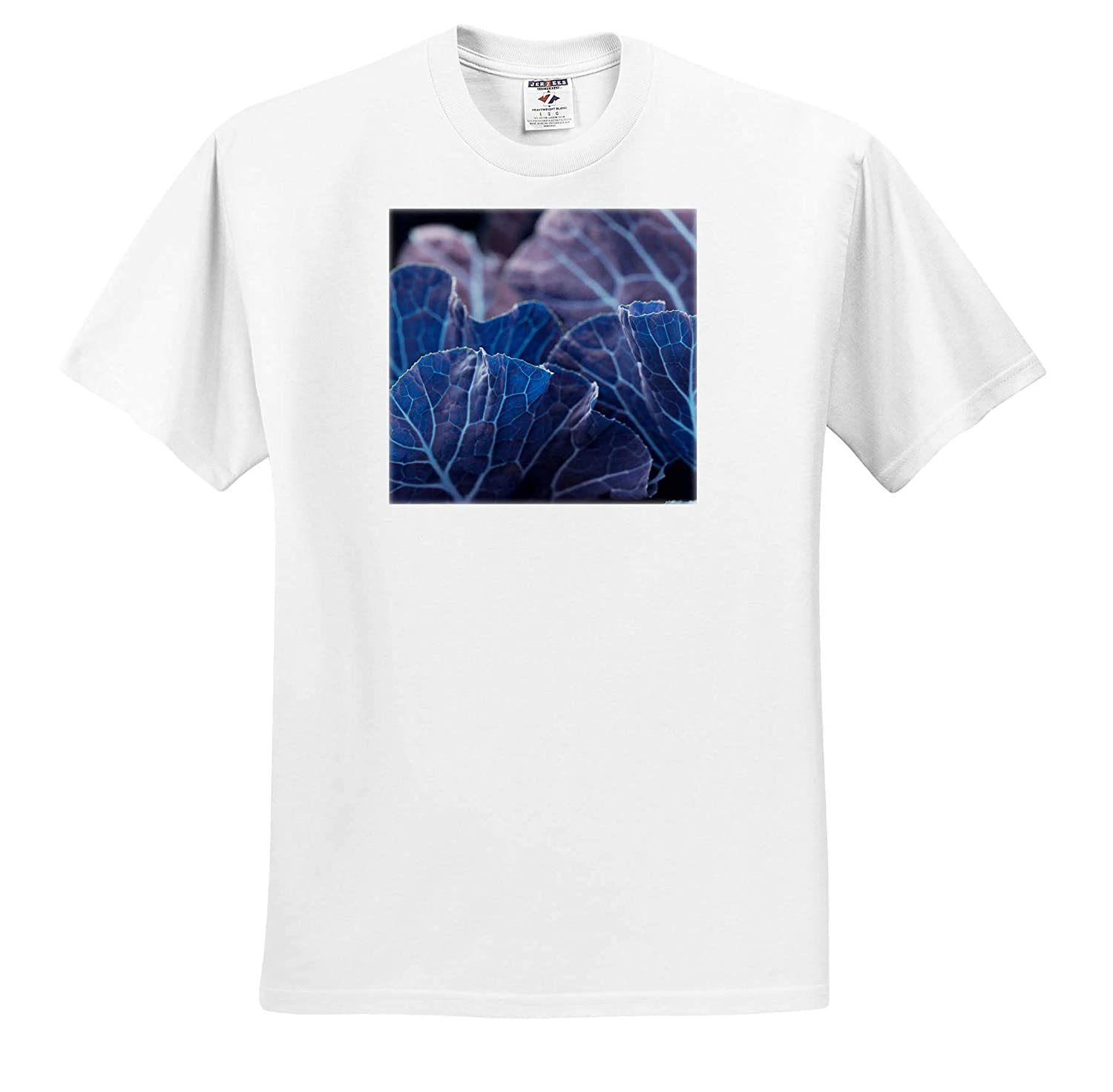 - T-Shirts Abstract an Abstract Macro Photograph of Collard Green Leaves Turned Blue 3dRose Stamp City