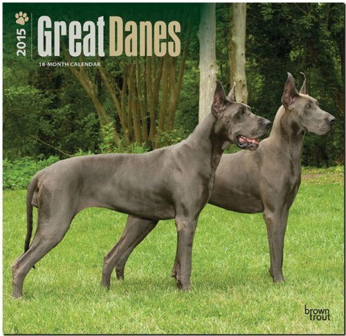 Download By BrownTrout Great Danes 2015 Square 12x12 (Multilingual Edition) (Wal) [Calendar] ebook