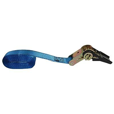 Reese Secure 9546300 12' Standard Duty Endless Ratchet: Automotive