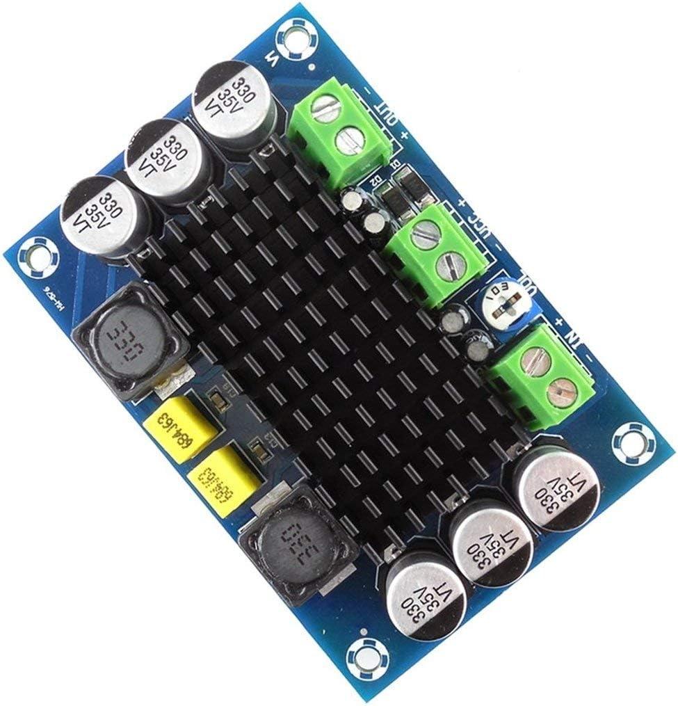 HW-576 Mono 100 Watt Digitale Verst/ärkerplatine TPA3116D2 Chip 12 V-26 V Endstufe Digital Audio Verst/ärker DIY Machen Lieferungen-Multicolor