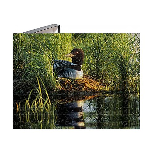 Media Storehouse 252 Piece Puzzle of USA, Minnesota, Common Loon, Nest, Leech Lake (11160003)