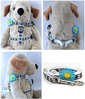 "product image for Diva-Dog 'Gerber Daisy Blue' Custom 5/8"" Wide Dog Step-in Harness with Plain or Engraved Buckle, Matching Leash Available - Teacup, XS/S"