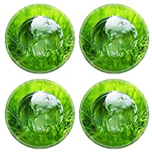 Luxlady Natural Rubber Round Coasters IMAGE ID 25151568 Glass globe in the grass concept for environment and conservation
