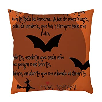 Amazon.com: Hidden Zippered Pillowcase Halloween American ...