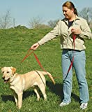 The Grrrip Two Handled Dog Leash – 1″ x 6′ Red, My Pet Supplies