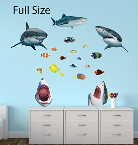 Amazoncom Shark Wall Murals with Tropical Fish Decal Shark Decal
