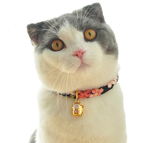 Muodu - Collar para Gato con Diseño de Flor Hecha a Mano con ...