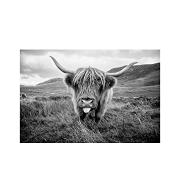 Highland Cattle Art Décoratives Toile Peintures Xiaochengbizhi kXn0P8Ow