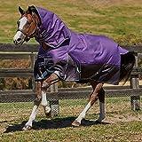 Weatherbeeta Comfitec Plus Dynamic Detach-A-Neck Medium Purple/Black 81''