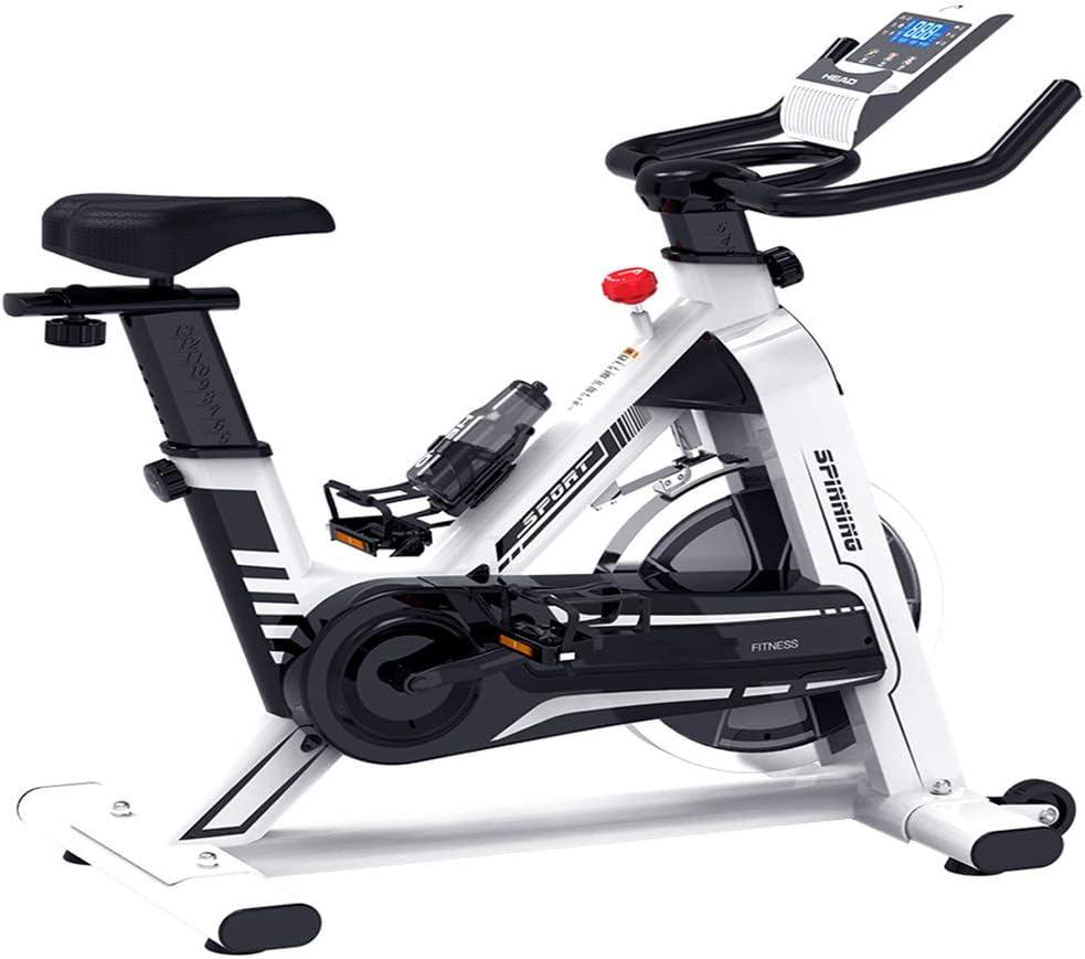 MLQ Bicicleta de Spinning para el hogar, Equipo de Ejercicios de ...