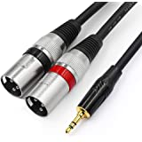 TISINO 3.5mm to Dual XLR Stereo Cable 1/8 inch Mini Jack to 2 XLR Male Y Splitter Adapter Cord- 6.6 FT