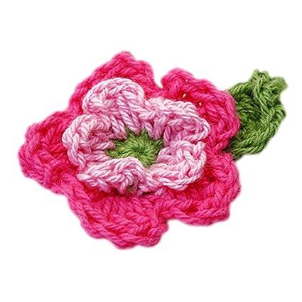 Amazon 10pcs 5 Petal 2 Layer Handmade Crochet Flower Appliques