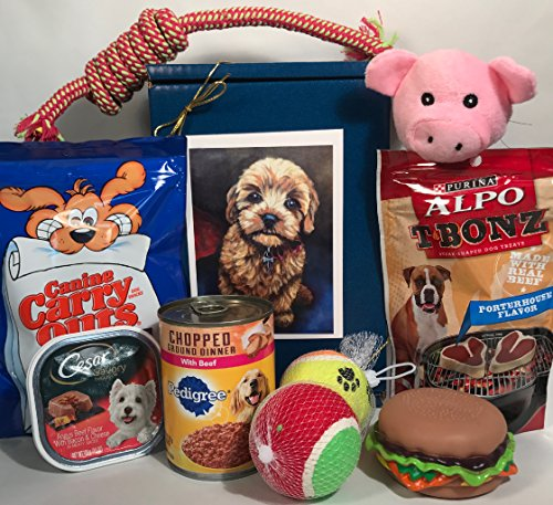 Dog or Puppy Gift Box Basket For A Favorite Canine / Fur Baby -- Send These Treats and Toys to a Furry Pet Friend