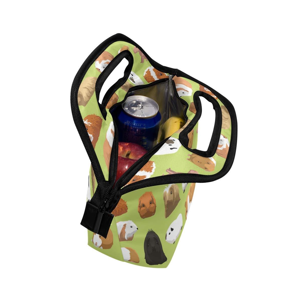 M/änner Jungen Frauen Lunch Bag Verschiedene Rassen Meerschweinchen Neopren Isolierte Thermische Lunchbox Tote Schule Picknick Tragen f/ür Kinder M/ädchen