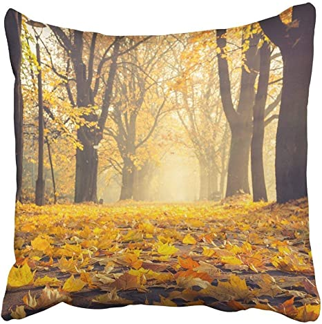 Amazon Com Custom Brown Forest Autumn Colorful Tree Alley In The Park On Sunny Day Krakow Poland Orange Fog Landscape Pillowcase 20x20 Inch Home Kitchen
