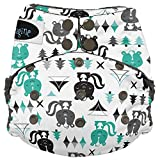 Imagine Baby Products Stay Dry All-in-One Snap Diaper, Lil Stinker