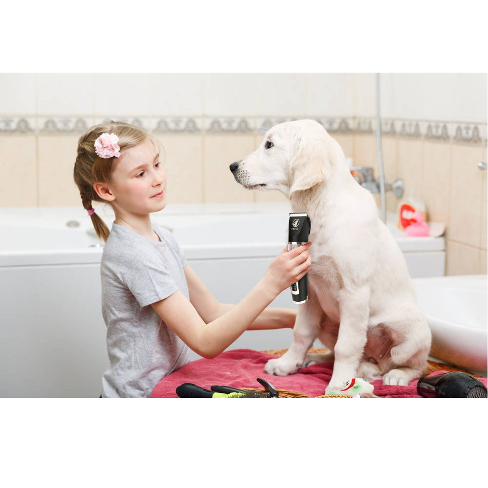 Ceenwes Dog Clippers Heavy Duty Low Noise Rechargeable Cordless Pet Clippers Professional Dog Grooming Clippers with Power Status Dog Grooming Kit with 11 Tools for Dogs Cats Other Animals by Ceenwes (Image #6)