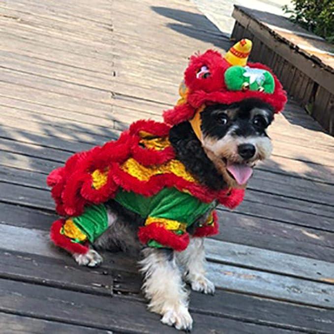 Disfraz De Mascota Disfraz De Perro Lion Dance Dragon Dancec Ropa ...