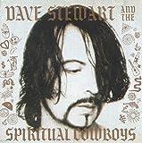 Dave Stewart & The Spiritual Cowboys
