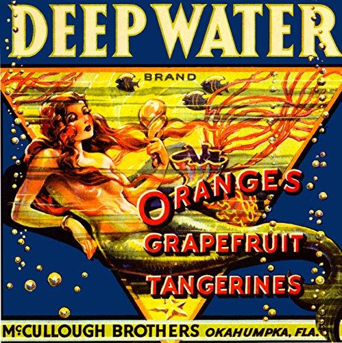 A SLICE IN TIME Okahumpka Deep Water Florida Mermaid Orange Fruit Crate Label Art Print Travel Advertisement Poster