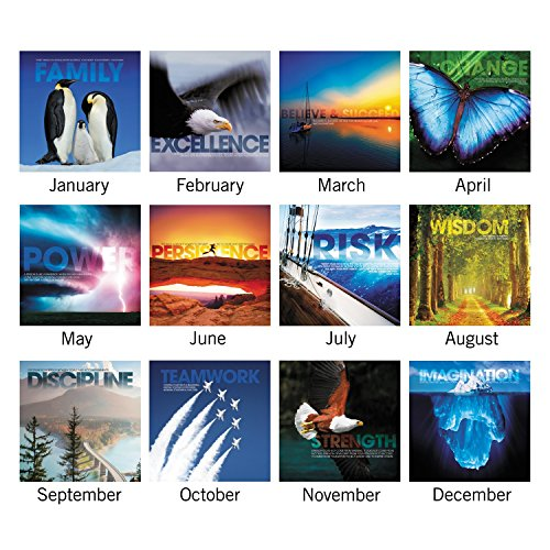 AT-A-GLANCE Desk Pad Calendar 2017, Monthly, 21-3/4 x 17″, Successories Motivational (SKW800-00)