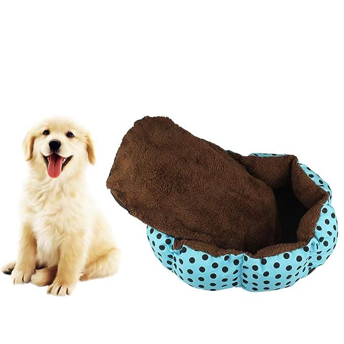 Amazon.com: 2019 Nuevo. Cama para mascotas, para perros ...