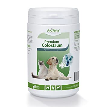 AniForte Premium Colostrum Polvo 500 g, Leche Natural para Gatos, Perros y Caballos, Polvos de calostro, proteínas para su Animal: Amazon.es: Productos para ...
