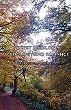 Forest Folklore, Mythology and Romance, Alexander Porteous, 1443735671