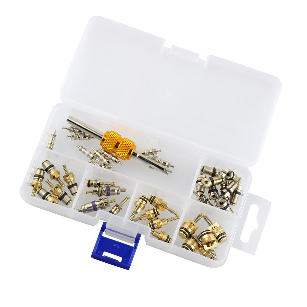 MonkeyJack 40 Pieces Assorted A//C Schrader Valve Core Removal Tool HVAC R134a R12 Kit with Portable Box