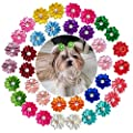 Yagopet 40pcs Pack 20pairs Cute New Dog Hair Bows With Rubber Bands Pearls Flowers Topknot Mix Styles Dog Bows Dog Flower Pet Grooming Products Dog Headdress Topknot