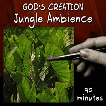 jungle ambience 90 minutes by god 39 s creation on amazon music. Black Bedroom Furniture Sets. Home Design Ideas
