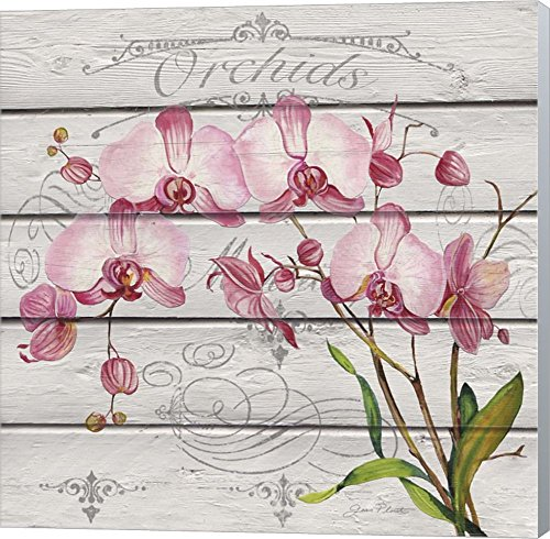 Pink Orchids by Jean Plout Winter Gray Sides