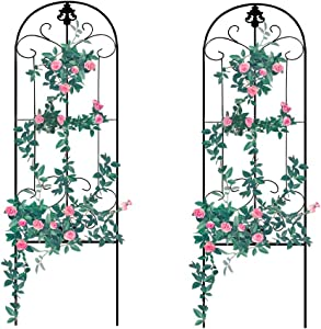 GardenTrellis for Vines and Climbing Plants, 2 Pack Black Metal Wire Lattice Grid Panels for Cucumber & Vegetables, Clematis Support, Rose Vines, Durable & Sturdy Beautiful Plant Decor
