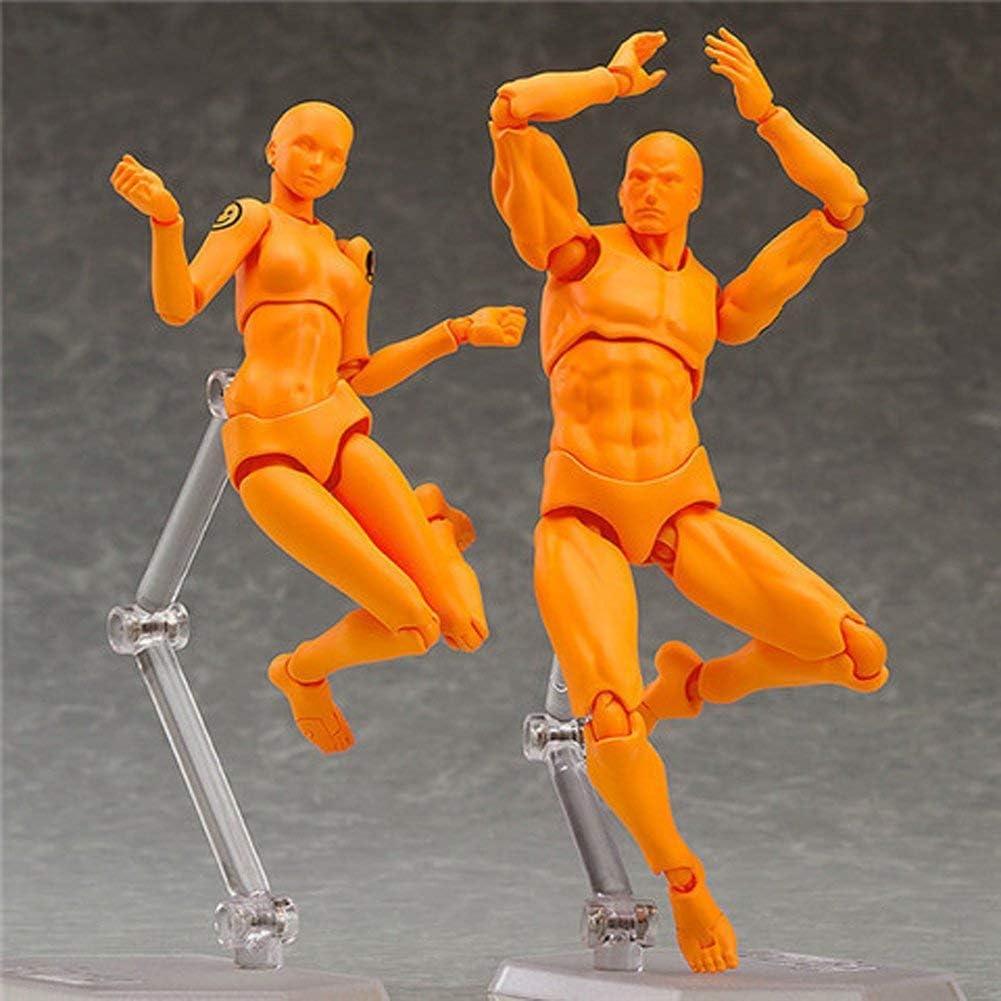 Dessin Mannequin MuZhuo Art Doll Mod/èle Mannequin Humain 15cm Poup/ée Corps Homme//Femme Action pour Prototype Sketch Mannequin Marionnette Jeunes Outils Bricolage//Cadeaux