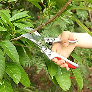 TILLAIN Pruning Shears Silicone Handle Scissors Professional Bypass Pruners Gardening Cutters Tools SK-5 Steel Blade Clippers Tree Trimmer Efficient Rope Snips