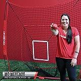 PowerNet DLX 7x7 Baseball Softball Hitting Net