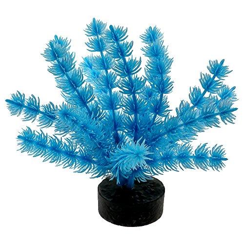 Blue Ribbon Pet Products 30559 Neon Blue Color Burst Plant Fox Tail