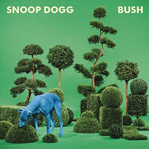 BUSH (The Best Of Bush)