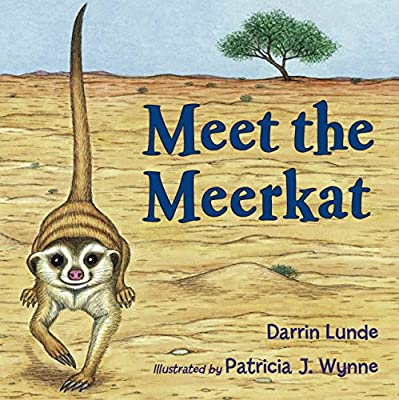 Image result for meet the meerkat