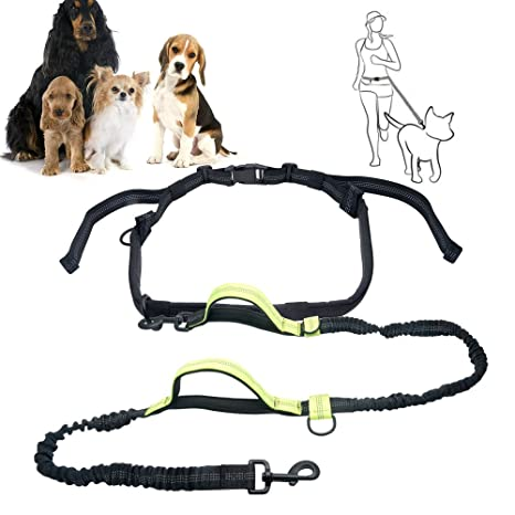 Amazon Com Top Max Waist Dog Leash Training Hands Free Wearing
